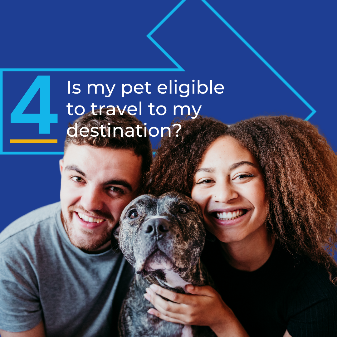 Is my pet eligible to travel to my destination